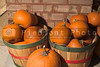 Baskets of fall harvest pumpkins ready for pie making.