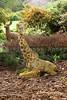 A giraffe yard ornament.