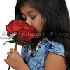 Little Girl Holding Rose