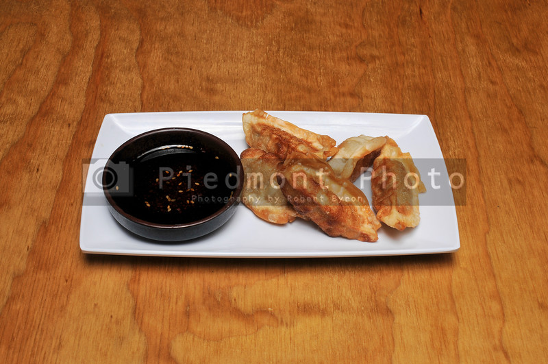 Japanese Gyoza Dish