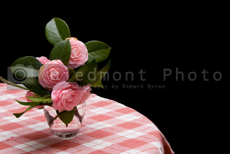 A beautiful bouquet of Pink Roses in a vase