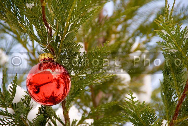 A Christmas Ornament on a snow covered tree