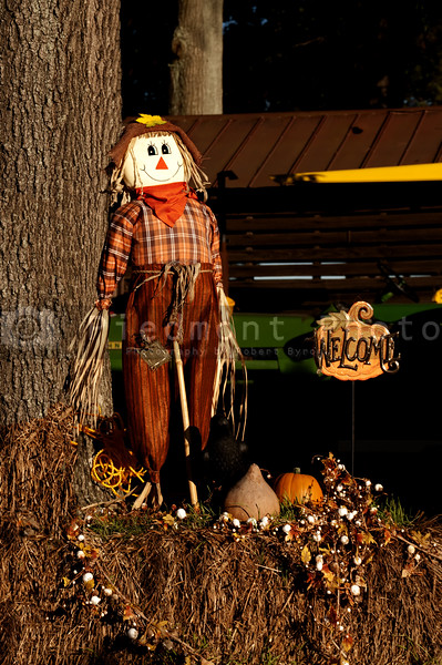 A halloween holiday scarecrow welcoming trick or treaters