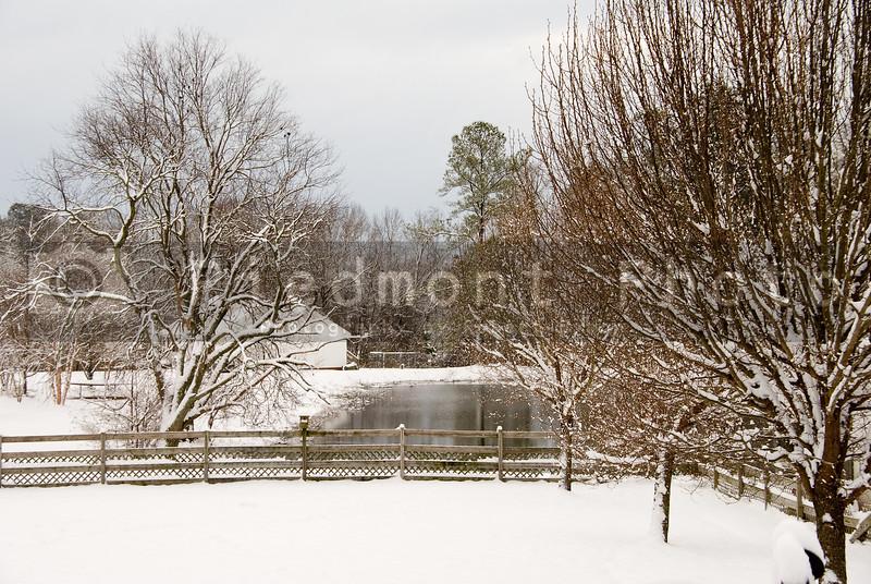 Freshly fallen snow on a backyard pond