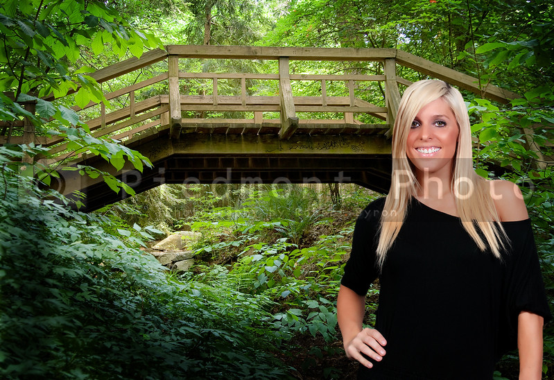 An old wooden footbridge in a forest.