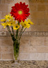 A Red Gerbera Daisy & Yellow Daisys in a Vase