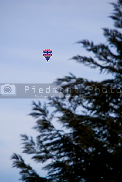 A Hot Air Balloon floating above the trees
