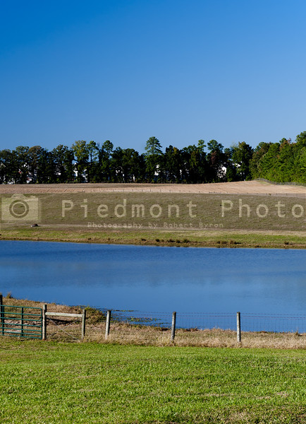 A pond landscape on a cloudless day