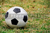A Soccer Ball on a playing field