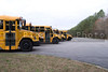 A line of school busses in a parking lot