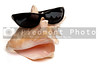 A conch shell wearing a pair of sunglasses