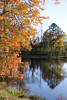 An Autumn landscape in a rural area pond.