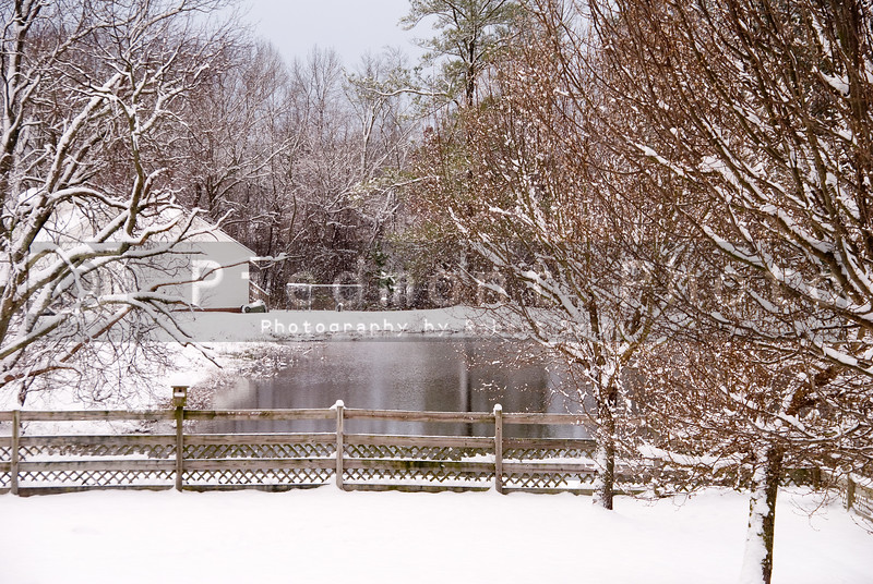 A freshly fallen snow on a country pond
