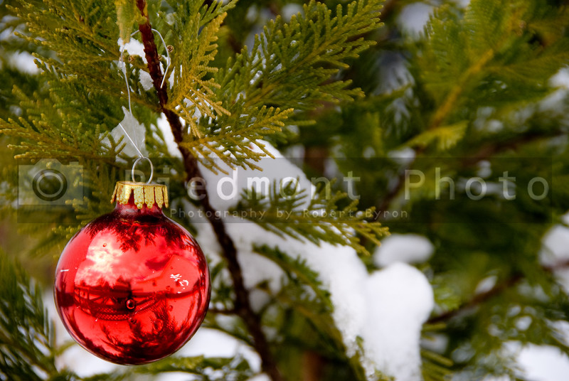 A Christmas Ornament hanging on a snow covered tree