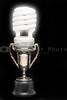 Light Bulb Trophy