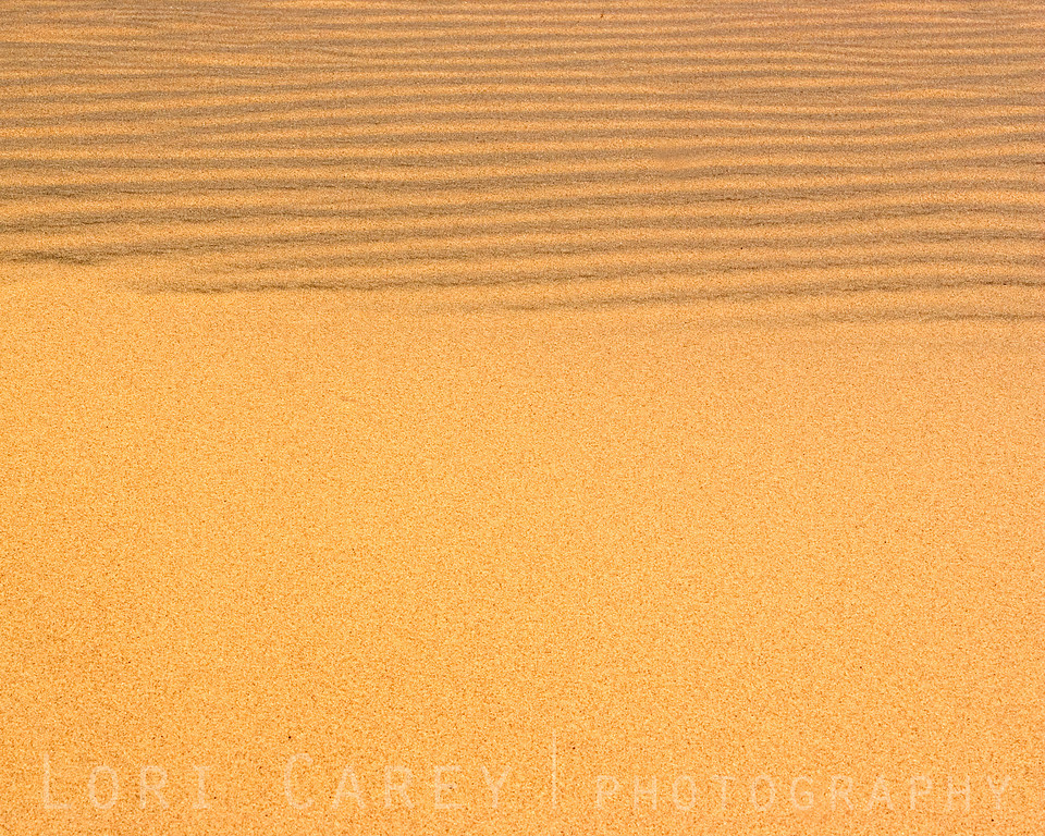 Sand dune ripples at Kelso Dunes, Mojave National Preserve.