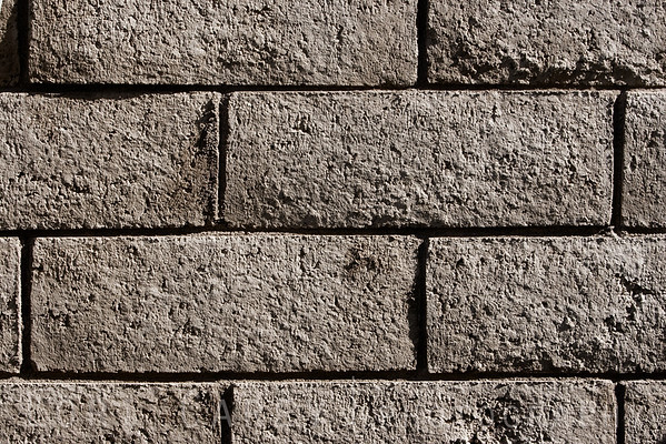 Brick wall, late afternoon light