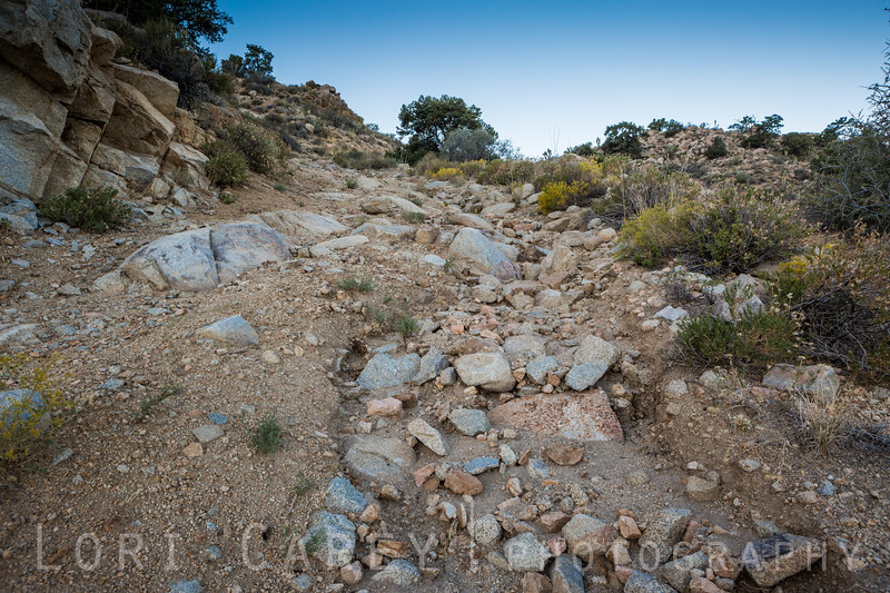 The trail is a rugged steep climb that is very off camber