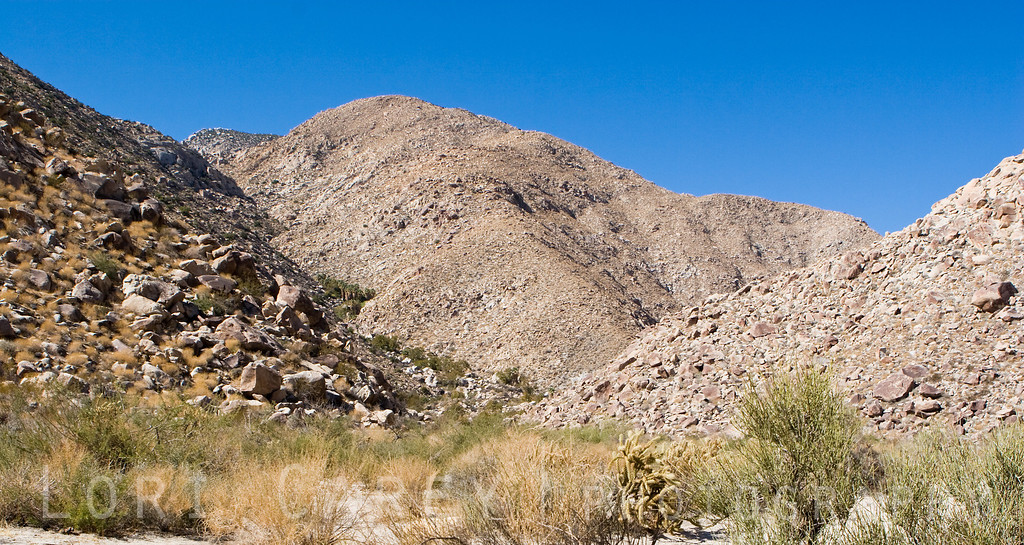 Sheep Canyon, Anza-Borrego Desert State Park