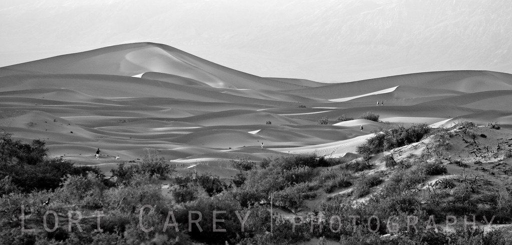 Stovepipe Wells sand dunes in Death Valley at sunset - black and white