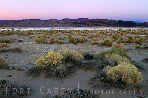 Dusk on the salt flats of southern Death Valley National Park