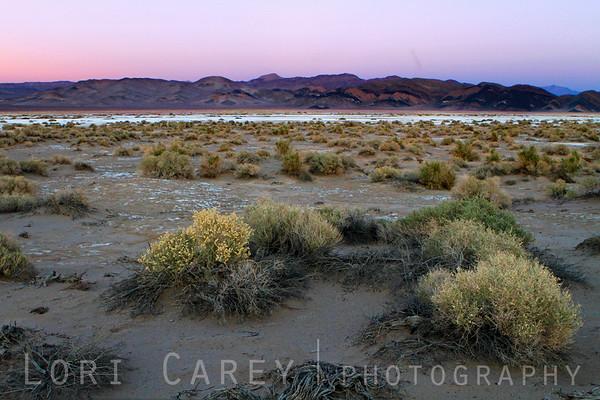 Dusk on the salt flats of southern Death Valley National Park