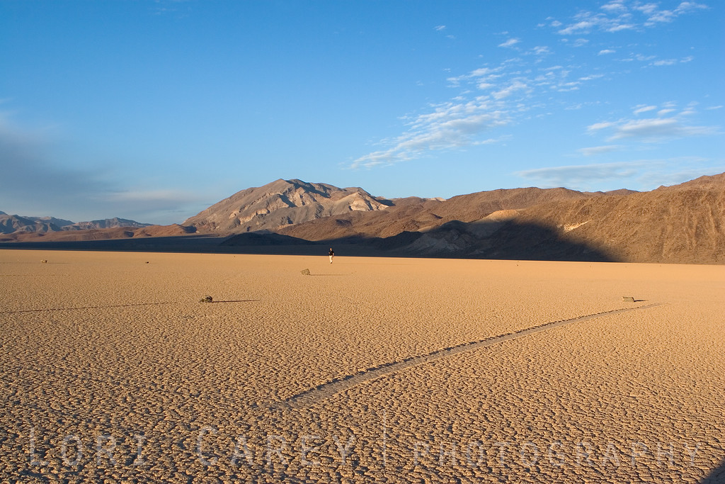 "A lone man walks across the Racetrack Playa in Death Valley National Park. The Racetrack Playa is known for it's mysterious moving rocks, seen in the foreground. <br><br> <a href='http://www.licensestream.com/LicenseStream/client/contentDisplay.aspx?cid=12463&fid=13176&l=r'><font color=""red"">License this Image</font></a>"