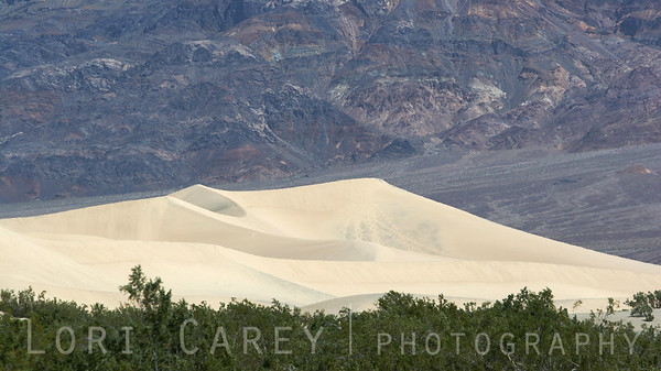 The sand dunes at Stovepipe Wells in Death Valley