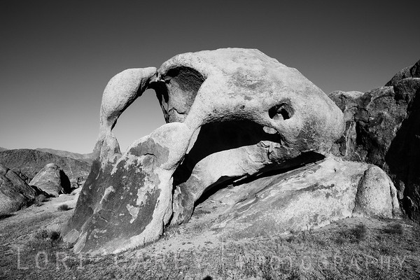 Cyclops Double Arch in black and white, Alabama Hills, California