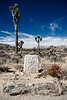 John Lang's grave in Joshua Tree National Park. Lang was a prospector who once owned the Lost Horse Mine.