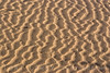 Ripples in the sand dune - Kelso Dunes, Mojave National Preserve
