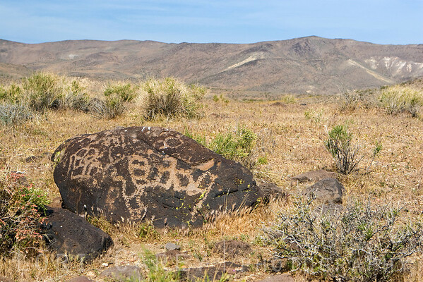 Native American petroglyphs (rock art) on the hill behind Sheep Spring.