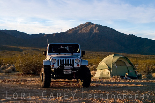 My camp at sunrise, Kelso Dunes, Mojave National Preserve
