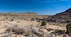 View from the old homestead at Camp Rock Spring in the Mojave desert.