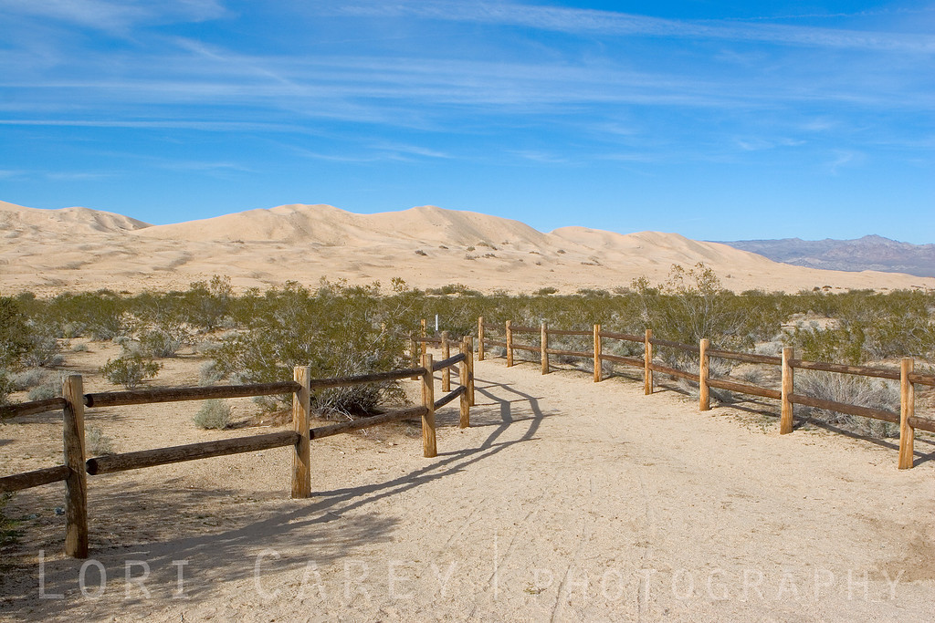 The official trailhead at Kelso Dunes, Mojave National Preserve