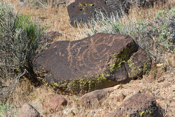 One of the many Kawaiisu indian petroglyphs near our camp at Sheep Spring.