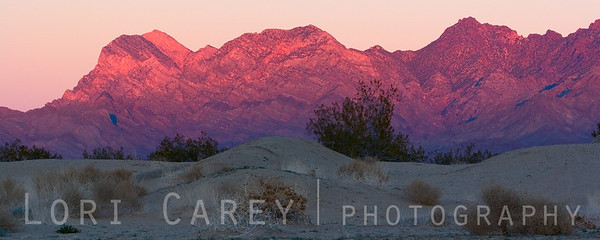 Alpenglow on the Providence Mountains. Kelso Dunes, Mojave National Preserve