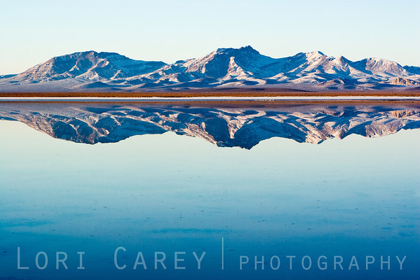 Snow-covered mountains reflected in East Superior Dry Lake in the Mojave Desert. This is usually a playa (a dry lake bed); a major winter storm brought a snow to the Mojave Desert, creating this once-in-a-lifetime scene.