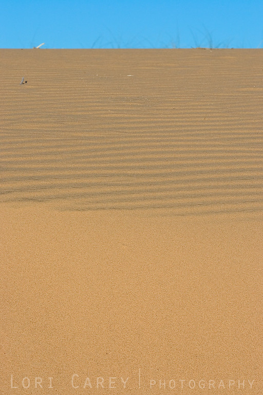 Rippled sand dune at Kelso Dunes in Mojave National Preserve