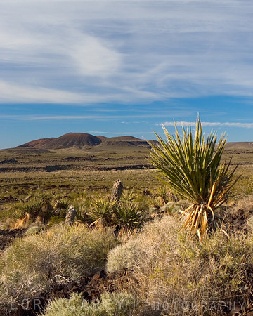Some of the cinder cones found in Cinder Cones and Lava Flows National Natural Landmark, Mojave National Preserve