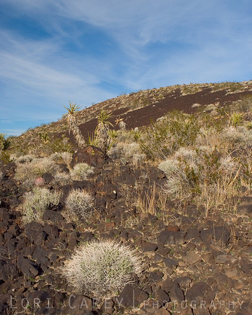 Cinder Cones and Lava Flows National Natural Landmark
