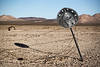Hubcap on barbed wire fence, Mojave Desert
