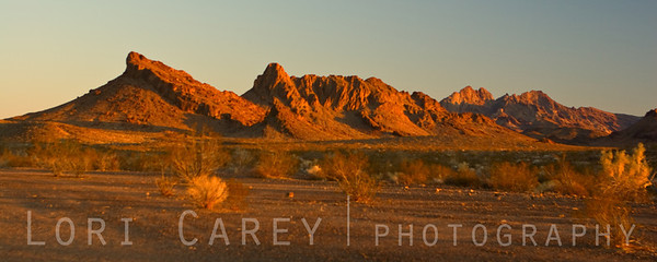 Last light on the Turtle Mountains in the east Mojave Desert.