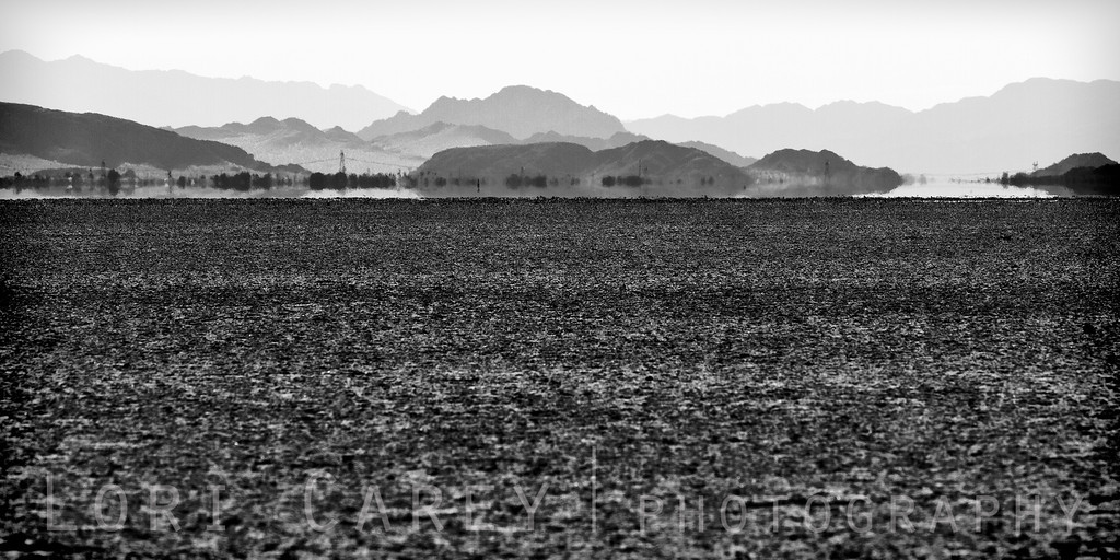 Mirage, Silver Dry Lake in the Mojave desert. Along with Soda Dry Lake, this is the remains of the ancient Lake Mojave.