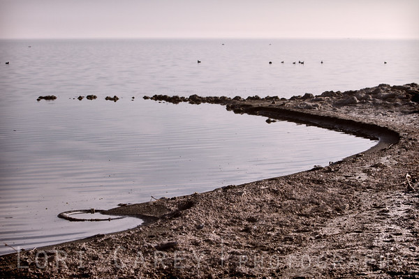 Curves, Salton Sea shoreline