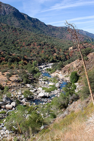 Driving to Sequoia NP - Kaweah River?