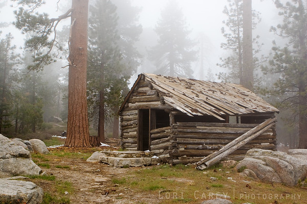 We found this really cool dilapidated cabin on one of the side trails we explored.