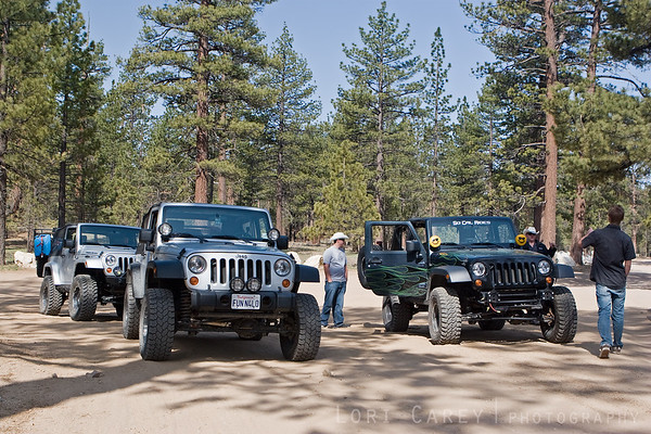 Jeeps airing down at the trailhead for John Bull