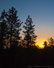 Sunrise from the Anderson cabin in Big Bear