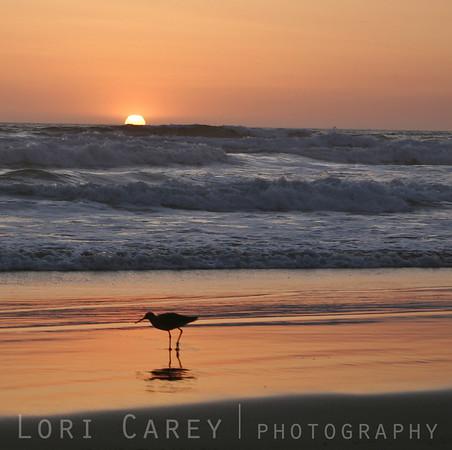 A sunset in Laguna Beach, California